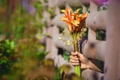 Лилии Calla в руке через загородку Стоковое фото RF