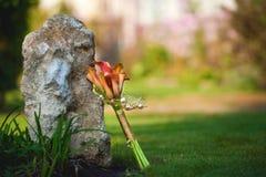 Лилии Calla приближают к большому камню Стоковые Изображения RF