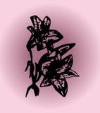 Лилия иллюстрации на фиолетовой предпосылке Стоковые Фото