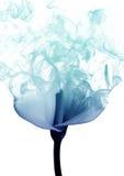 Лилия от дыма стоковое фото rf