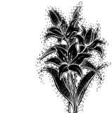 Лилия Woodcut черная Стоковая Фотография RF