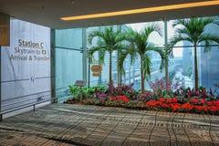 Лобби c станции Skytrain в авиапорте Changi стоковое изображение rf