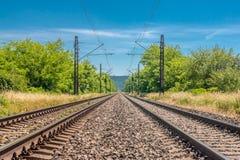 Лоб к главному железнодорожному следу скорости Стоковое Изображение RF