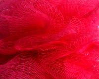 ловить сетью красный цвет Стоковая Фотография