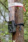 Ловушка камеры Стоковое Фото