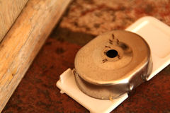 ловушка муравея Стоковое фото RF