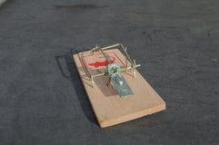 Ловушка мыши Стоковое фото RF