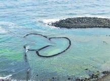 Ловушка рыб Двойн-сердца Стоковое фото RF