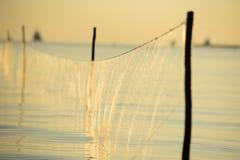 Ловушка рыб Стоковые Изображения RF