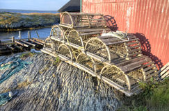 Ловушки омара, голубой утес, Nova Scotia стоковое изображение rf