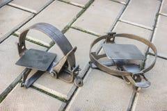2 ловушки утюга ржавых на каменном поле стоковые изображения