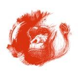 Логос обезьяны головной в светотеневом бесплатная иллюстрация