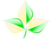 логос экологичности зеленый Стоковое фото RF