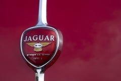логос ягуара автомобиля старый Стоковое Изображение RF
