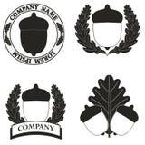 Логотипы с изображением жолудя Стоковое Изображение