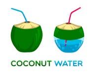 Логотип вектора для воды кокоса Стоковая Фотография