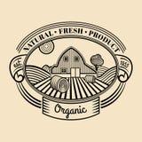 Логотип гравировки ретро фермы вектора свежий Винтажный органический био значок продуктов Знак еды Eco иллюстрация штока