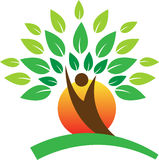 Логотип дерева иллюстрация штока