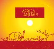 Логотип животного Африки вектора плоско простой minimalistic Стоковое фото RF