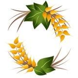 Логотип зерен пшеницы Стоковое Фото