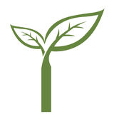 Логотип инициала i вектора зеленый Стоковые Изображения
