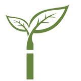 Логотип инициала i вектора зеленый стоковые фотографии rf