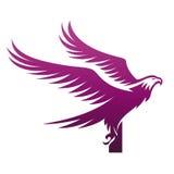 Логотип инициала i хоука вектора фиолетовый храбрый Стоковая Фотография