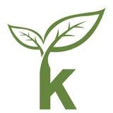 Логотип инициала k вектора зеленый Стоковое Изображение RF