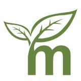 Логотип инициала m вектора зеленый Стоковая Фотография