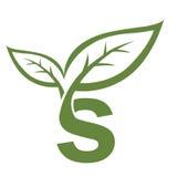 Логотип инициала s вектора зеленый Стоковые Изображения