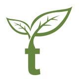 Логотип инициала t вектора зеленый Стоковая Фотография RF