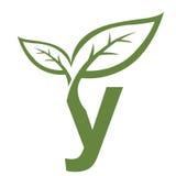 Логотип инициала y вектора зеленый Стоковые Изображения