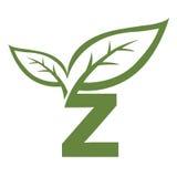 Логотип инициала z вектора зеленый Стоковые Фотографии RF