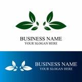Логотип лист Стоковые Фото