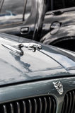 Логотип и эмблема автомобиля ягуара Стоковое фото RF