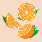 Логотип иллюстрации для желтого апельсина иллюстрация штока