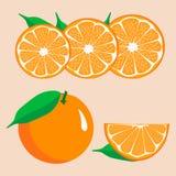 Логотип иллюстрации для желтого апельсина Стоковое Изображение RF