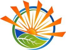 Логотип лист Eco Стоковая Фотография RF
