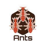 Логотип муравьев для дела или объекта животного, иллюстрации вектора стоковая фотография