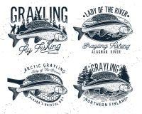 Логотип рыбной ловли мухы хариуса Дама реки Стоковые Фотографии RF