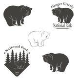 Логотип с изображением медведя Стоковая Фотография RF