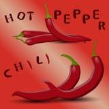 Логотип для chili перца Стоковое Изображение RF