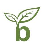 Логотип b инициала вектора зеленый Стоковое Фото