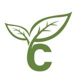 Логотип c инициала вектора зеленый Стоковая Фотография RF