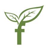 Логотип f инициала вектора зеленый Стоковые Фото