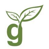 Логотип g инициала вектора зеленый Стоковое Изображение RF