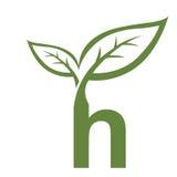 Логотип h инициала вектора зеленый Стоковое фото RF