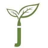 Логотип j инициала вектора зеленый Стоковые Фотографии RF