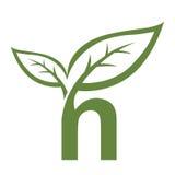 Логотип n инициала вектора зеленый Стоковое Изображение RF
