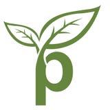 Логотип p инициала вектора зеленый Стоковые Фотографии RF